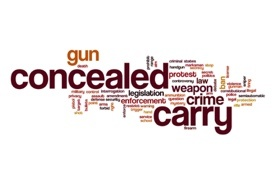 Contact us about commecial liability insurance and your concealed carry policy.