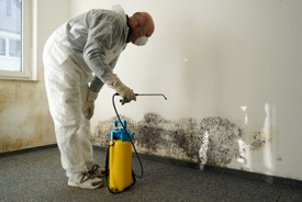Contact us to add mold remediation coverage to your Contractor Insurance policy. Serving Reading, Philadelphia, Lancaster, Allentown, Lehigh Valley, Harrisburg, Pittsburgh, Erie, PA and beyond with reliable business insurance for over 25 years.